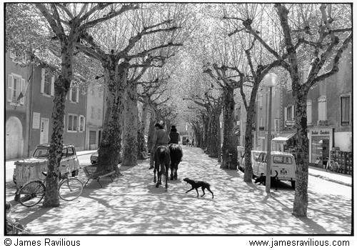 Tree-lined street with riders, Florac, Cévennes, France, 1982