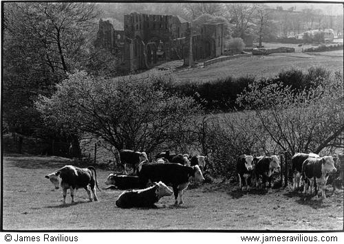 Llanthony Priory, Monmouthshire, Wales, 1977